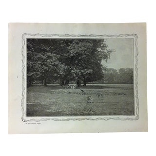 """1906 """"In Richmond Park"""" Famous View of London Print For Sale"""