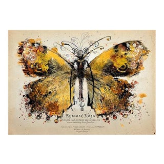 Polish Yellow Butterfly Poster