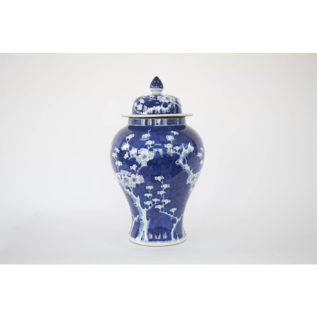 Asian Blue & White Cherry Blossom Temple Jars - A Pair For Sale - Image 3 of 5