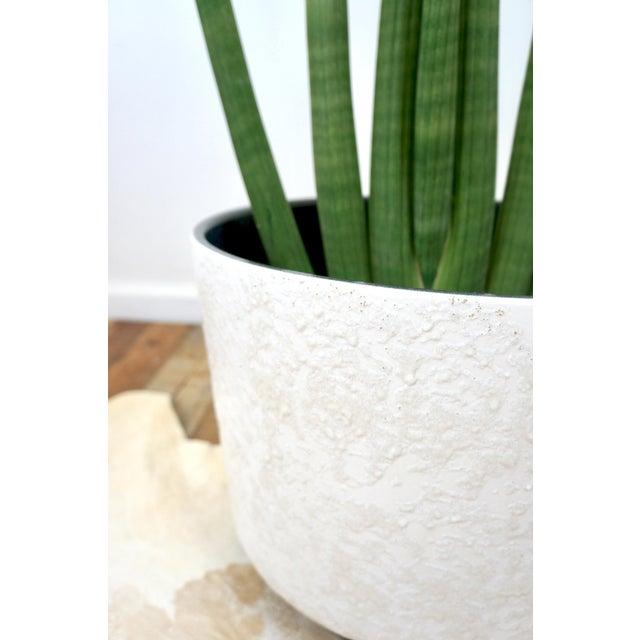 1960s Vintage Mid-Century White Ceramic Textured Glaze Planter For Sale - Image 5 of 8