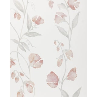 Serena & Lily Sweet Pea Blush Pink White Floral Wallpaper For Sale