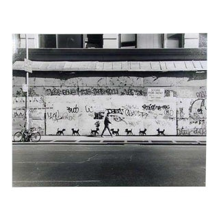 Peter Mayer, New York City for Rent With Dogs, Gelatin Silver Print For Sale
