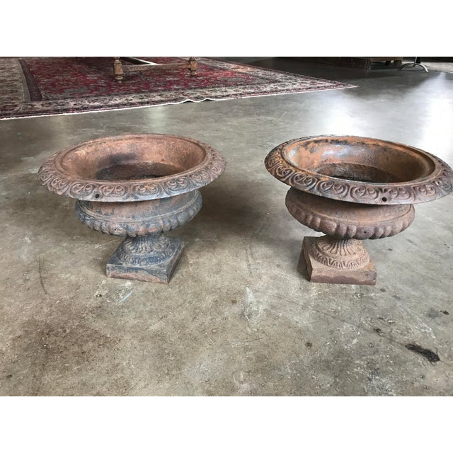 Two matching, turn of the century cast iron urns with original patina.