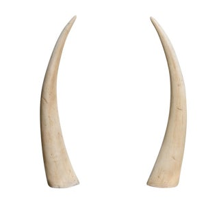 Mid Century Decorative Faux Horns on Aluminum Square Base, A-Pair For Sale