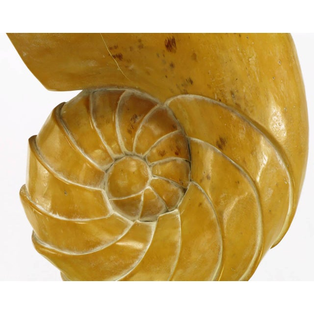 Carved Wood Ammonite Shell Sculpture on Brass Pedestal For Sale - Image 9 of 9