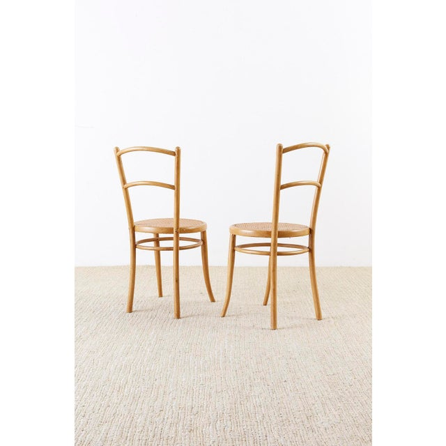 Pair of J. And J. Kohn Austrian Bentwood and Cane Chairs For Sale - Image 12 of 13