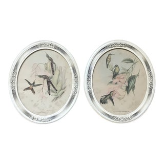 Vintage Traditional Framed Bird Prints - a Pair For Sale