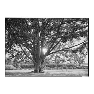 Beautiful Black and White Framed Photograph, by Charles Baker