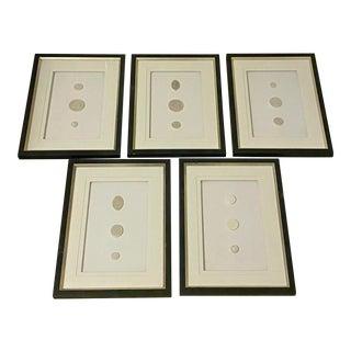 Antique Stone Intaglios, Framed - Set of 5 For Sale