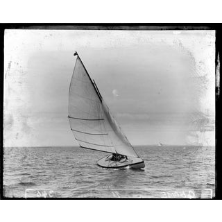 The Gnome - Print of Photo of Sailboat From Late 1800s