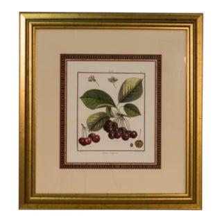 "Modern Sarreid LTD ""Cherries"" Framed Print For Sale"