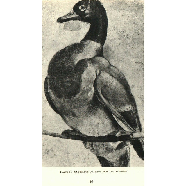 Early American Eight Centuries Animal Drawings For Sale - Image 3 of 3