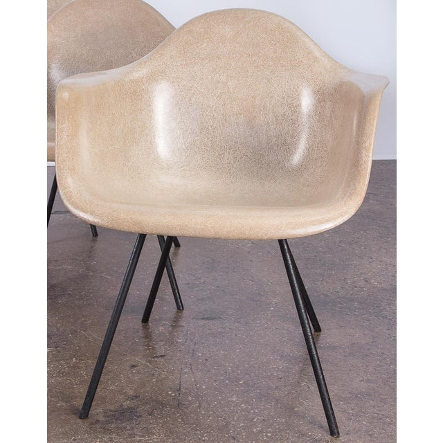 Second Generation Greige Eames Armshell Chair For Sale - Image 11 of 11