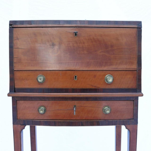 Collinson & Lock 19th Century Humidor For Sale - Image 7 of 10
