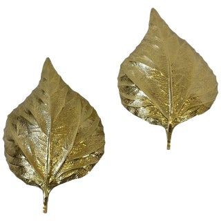 Pair of Large Brass Rhubarb Leafs Wall Scones by Tommaso Barbi For Sale
