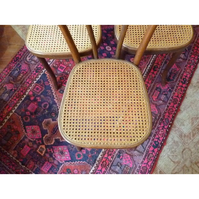 Americana Vintage Bentwood and Cane Cafe Dining Chairs - Set of 6 For Sale - Image 3 of 10