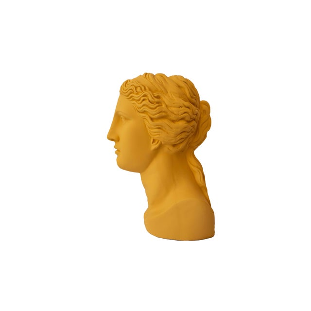 A reinterpretation of the classic bust, these vases are fun way to be classical and fresh. A classic Greek bust with a...