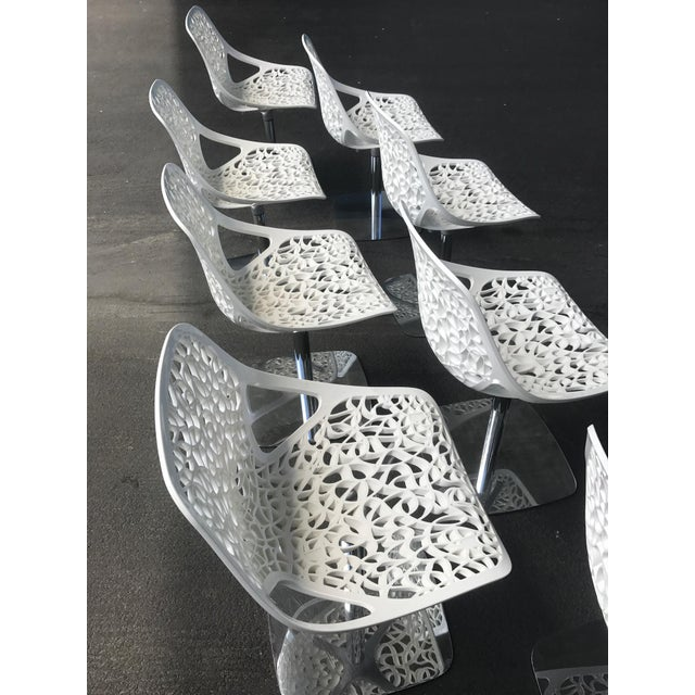 Casprini White Dining Chairs - Set of 8 For Sale - Image 5 of 11