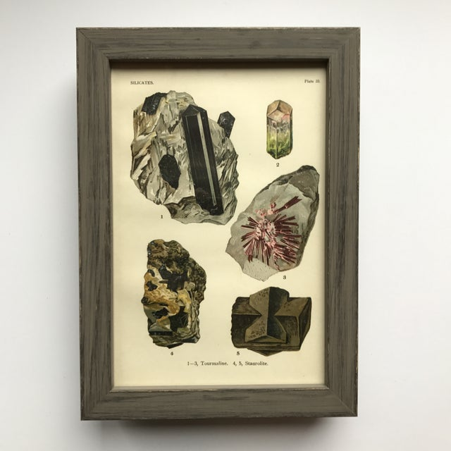 English Traditional Early 20th Century Antique Mineral Print Collection - Set of 40 For Sale - Image 3 of 12