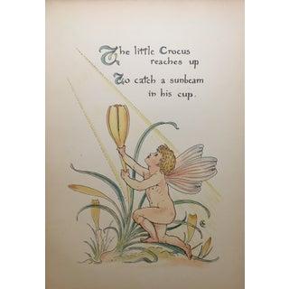 The Crocus Alphabet Floral Lithograph Print For Sale