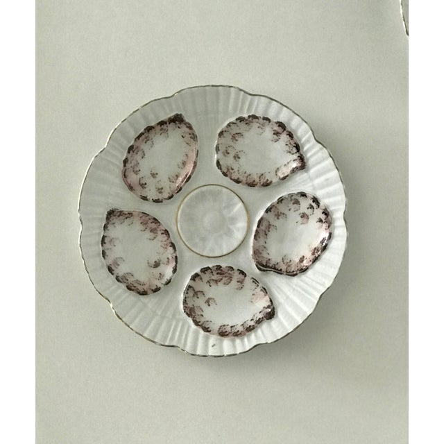 Traditional Vintage Gray and White Oyster Plates - Set of 4 For Sale - Image 3 of 7