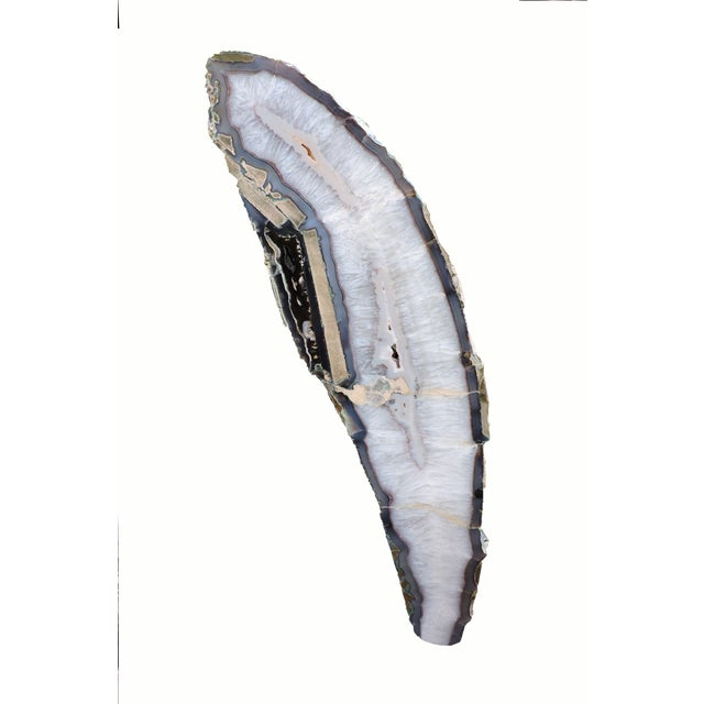 Polished Shooting Star Agate Slab For Sale In San Francisco - Image 6 of 6