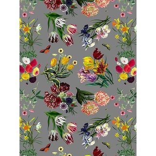 Nicolette Mayer for Scalamandre Flora & Fauna, Gray Wallpaper For Sale