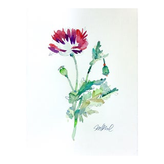 Poppy Dragon Original Watercolor Painting For Sale