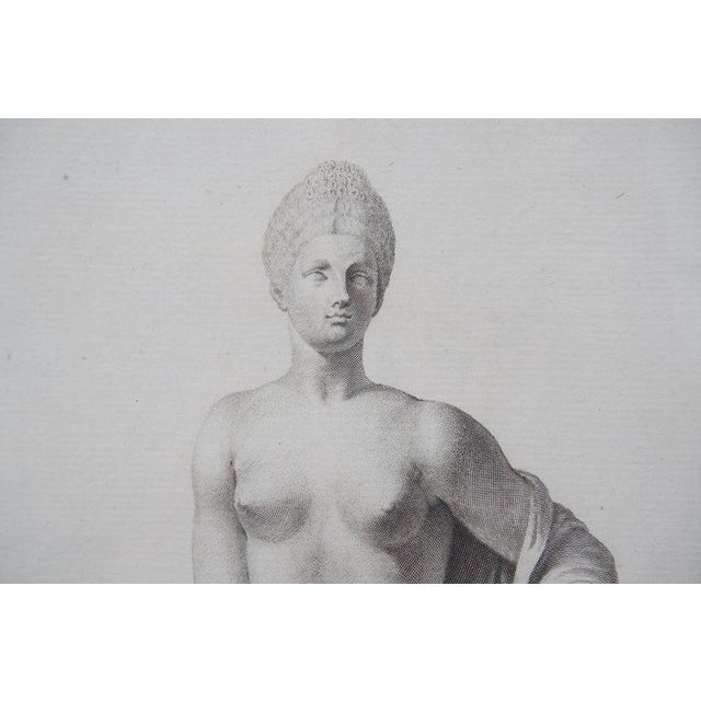 19th Century Neoclassic Engravings - Set of 4 For Sale In West Palm - Image 6 of 13