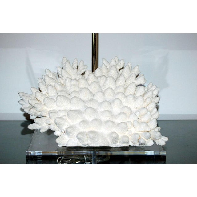 Coral Finger Table Lamp White For Sale In Little Rock - Image 6 of 9