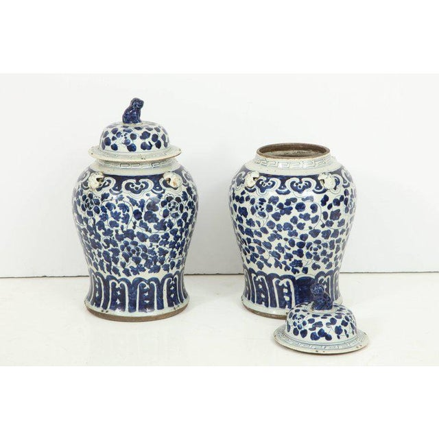 1960s Chinese Export Jars With Lids - a Pair For Sale - Image 9 of 11