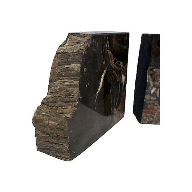 Vintage Petrified Wood Bookends For Sale In Los Angeles - Image 6 of 10