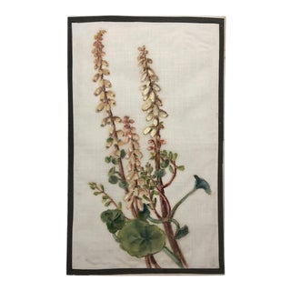 Antique British Watercolor on Linen Gauze of Wall Pennywort Flower For Sale