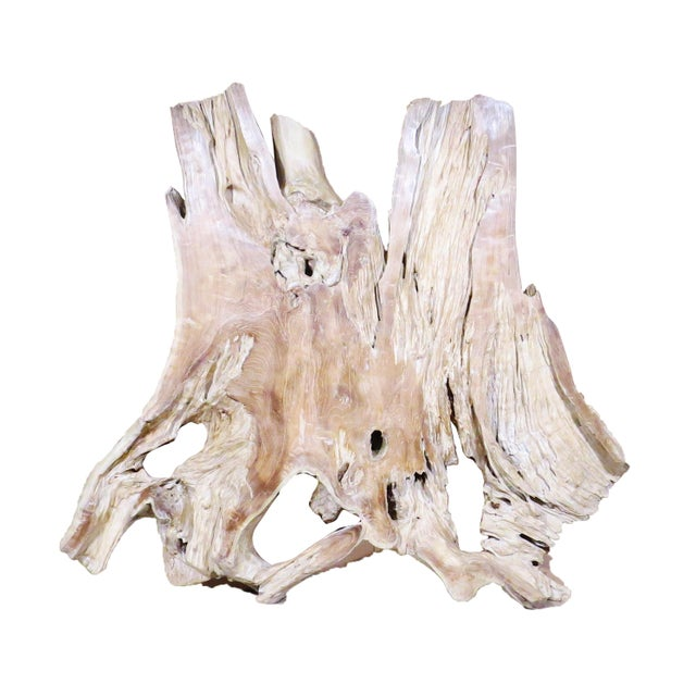 This organic teak root sculpture is carefully selected, carved, and smoothed to keep its beautifully created natural...