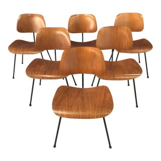 Mid-Century Modern Eames DCM Chairs - Set of 6