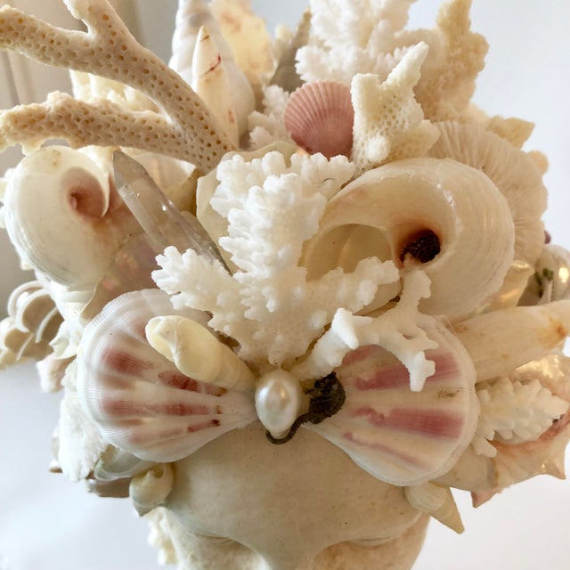 Christa's South Seashells Organic Modern Christa's South Seashells Cast Stone Hygiea Head For Sale - Image 4 of 6