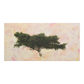 Robert Marchessault 'Harlequin Pine', Contemporary Abstract Tree Mixed Media Painting For Sale