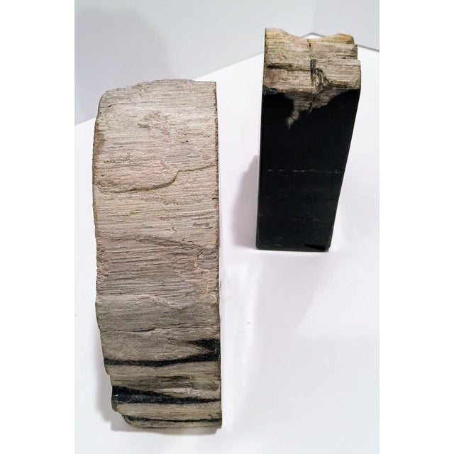 Pair of Petrified Wood Bookends - Image 11 of 13