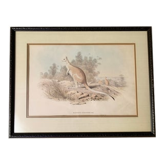 Victorian h.c. Richter Hand Colored Lithograph Artwork For Sale