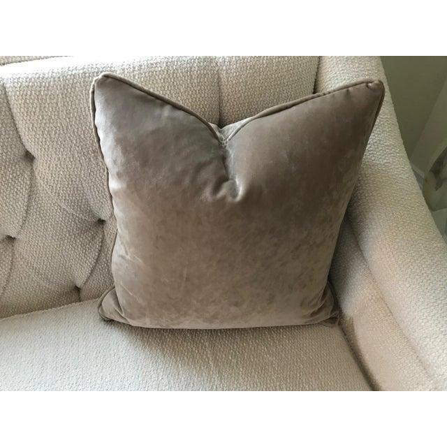 """Osborne & Little Osborne & Little Taupe Velvet Goose Down Insert Pillow 20""""x 20"""" For Sale - Image 4 of 5"""