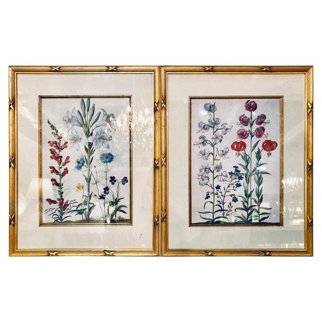 Wood Pair of Botanicals Chelsea House Labels on Reverse. Fine Frames For Sale - Image 7 of 7