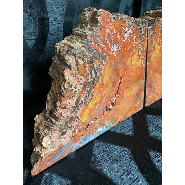 "Gem Grade Petrified Wood Bookends Araucaria ""Arizona Rainbow Wood"" - a Pair For Sale - Image 4 of 12"