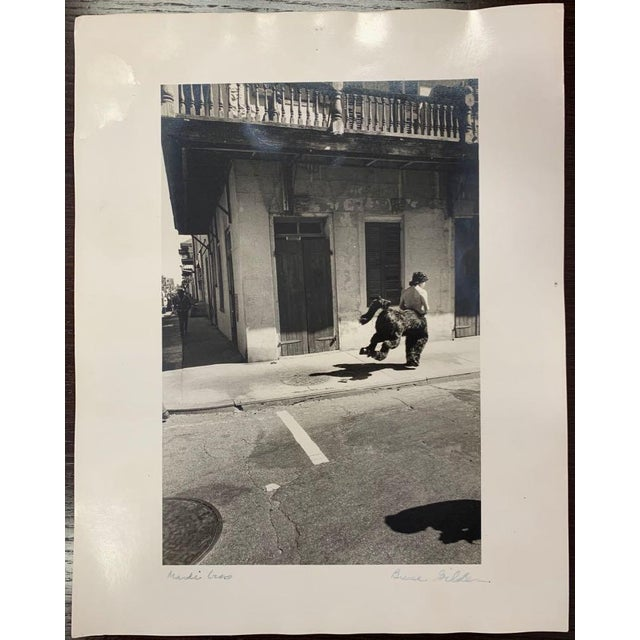 "Late 20th Century Vintage ""New Orleans Mardi Gras"" Photograph by Bruce Gildner For Sale - Image 9 of 9"