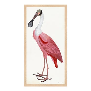 Pink Bird Rudbeck Tribute Spoonbill Framed in Nautral Wood Moulding For Sale