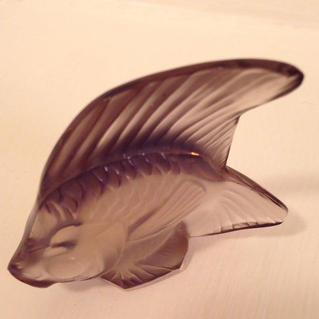 Purple Lalique Angel Fish Mauve For Sale - Image 8 of 8