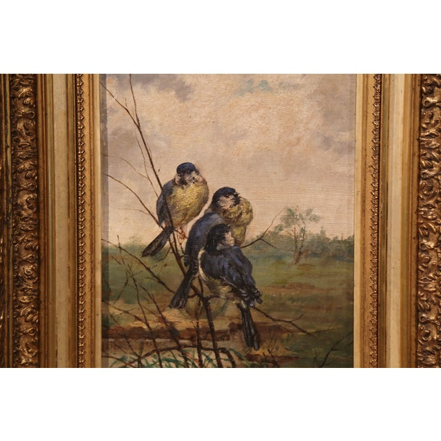 Pair of 19th Century French Birds Oil Paintings in Gilt Frames Signed Delor For Sale - Image 4 of 9