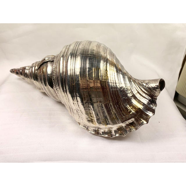 Mid 20th Century Sterling Silver Coated Conch Shell For Sale - Image 4 of 11