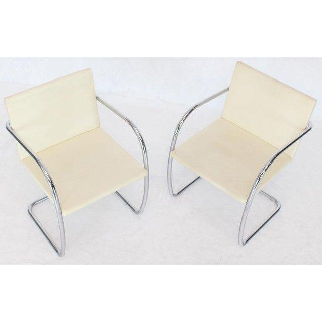 Animal Skin Pair of Thin Pad Tubular Brno Knoll Cream Leather Chairs Midcentury Bauhaus For Sale - Image 7 of 13