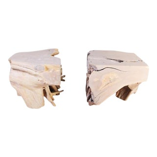 Organic Modern Sculptured Teak Root Coffee Table Base - 2 Pieces For Sale