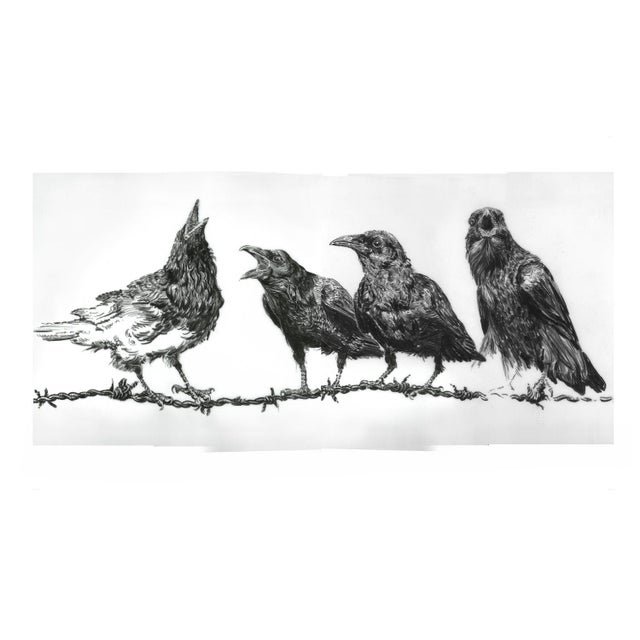 "Mid-Century Modern Contemporary ""Crows on Wire"" Rick Shaefer Charcoal Print For Sale - Image 3 of 5"